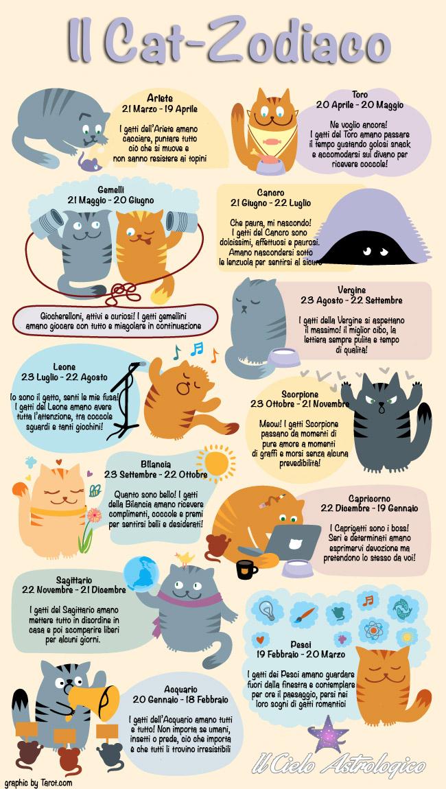 infografica cat zodiaco